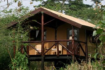 Chimps-Nest-Cottage-2